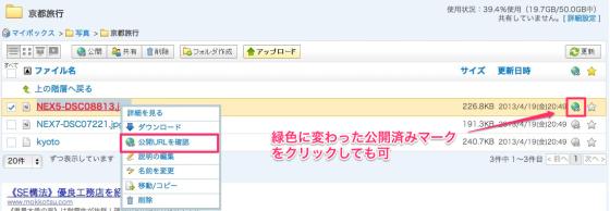 スクリーンショット_2013-05-16_20.50.24