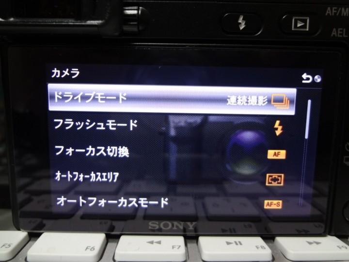 1DSC00021