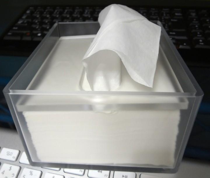 muji-desk-tissue-box-1DSC01347