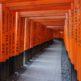 そうだ京都、行こう。異次元への入り口!?『伏見稲荷大社』の『千本鳥居』が圧巻!